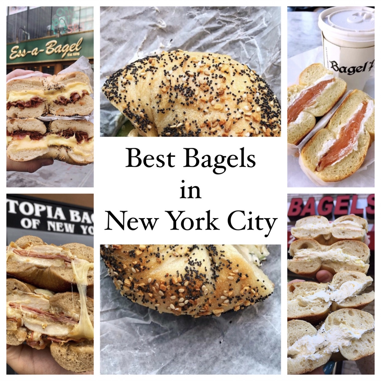 Collage of the best bagels in New York City